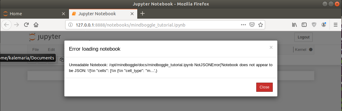 How to run a single Mindboggle function in Docker? Tutorial jupyter